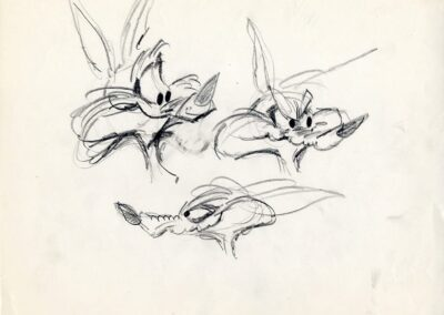 Wile E Coyote Faces Sketch