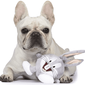 Bugs Bunny Dog Toy